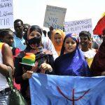 Retour sur les mobilisations contre le projet de révision de la constitution du 25 février 1992 au Mali: Quand l'élément déclencheur de la contestation est pris pour son but ultime