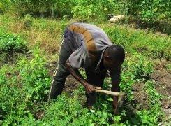 Pour penser le (re)positionnement des jeunes ruraux: Le décentrement