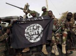 Les enjeux de la partition de l'Etat islamique en Afrique de l'Ouest (ex-Boko Haram)