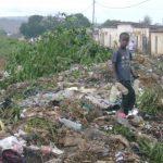 La lutte contre la pollution plastique au Cameroun: Comment (dé)légitimer l'action publique face à la divergence des enjeux
