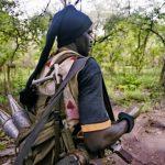 La rébellion casamançaise ou le conflit sinusoïdal au Sénégal